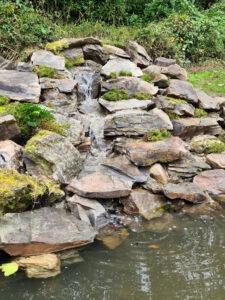 natural pool waterfall